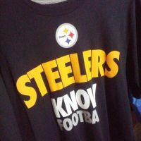 Nike Draft 2 (NFL Steelers) Men's T-Shir