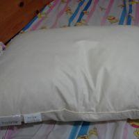 羽根枕 x 1 JPY5400Origin: japan